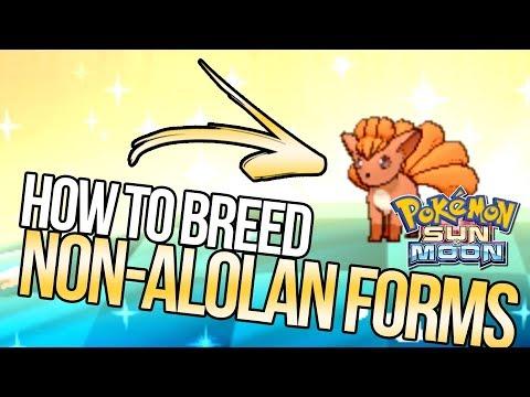 How To Breed Non-Alolan Regional Variant Pokemon In Sun And Moon | Austin John Plays