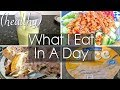 WHAT I EAT IN A DAY (HEALTHY) #2 | Shamsa