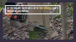 Tree Service Canton Ohio | filipropmaint.com | Call Now +1 330-904-4196