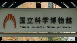 国立科学博物館 National Museum of Nature and Science, Tokyo [360°VR]