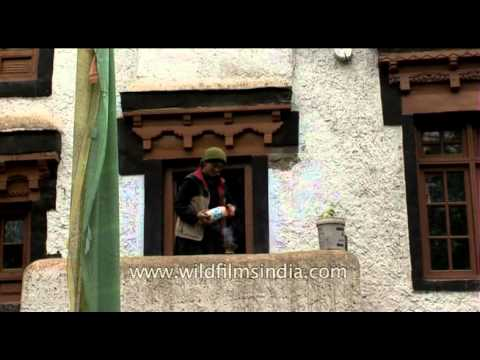 Old traditional houses of Ladakh