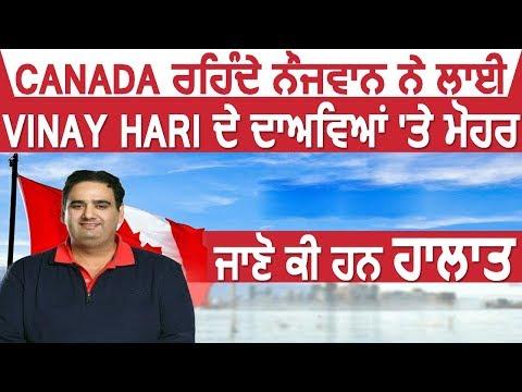Canada रहते युवक ने लगाई Vinay Hari के दावों पर मोहर, जाने क्या है हालात