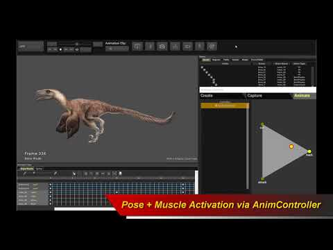 How to Animate 2D Skeletal Dinosaur Character for Unity and UE4 Game