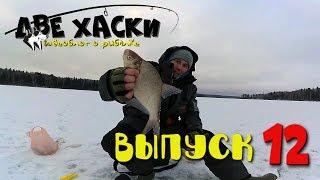 видео Рузское водохранилище