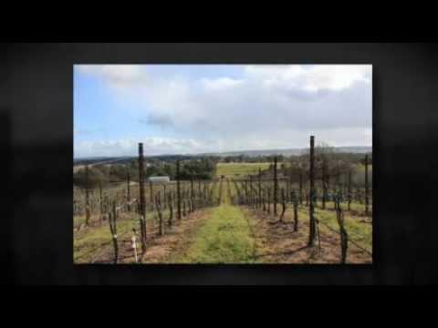 Paso Robles Vineyard For Sale - Paso Robles, California - Wine Real Estate