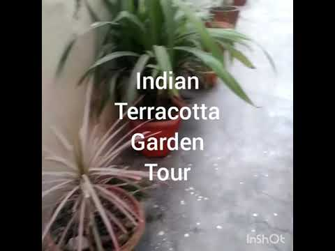 Indian Terracotta garden tour