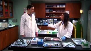 Sheldon insulta tutte le discipline scientifiche e non