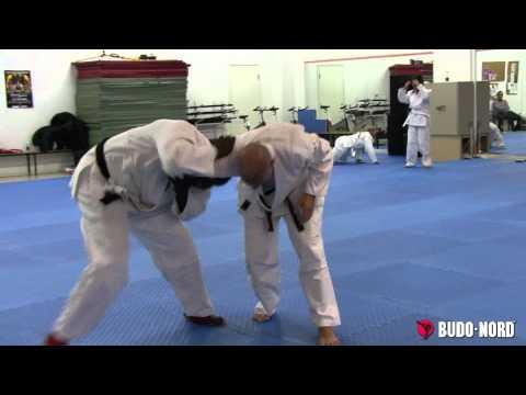 Sport jujitsu seminar at Enighet Sportcenter in Malmo, Sweden