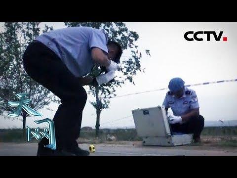 《天网》土坑里的真相:路人晨跑时发现路边土坑里有一具男尸   CCTV社会与法