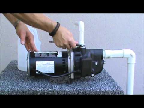 Shallow Well Pump Diagram Wayne Shallow Well Jet Pump With 8 5 Gallon Pressure Tank