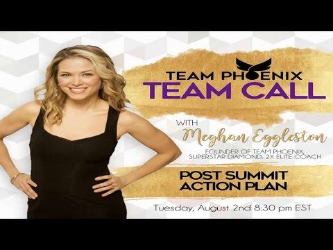 Team Phoenix Call - Post Summit Action Plan