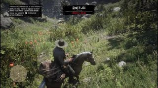 Red Dead Redemption 2 #6 hunting