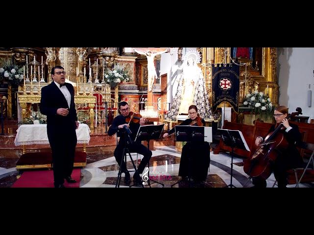 Hasta Mi Final | Musica para Bodas | Bodas Murcia | Musical Mastia