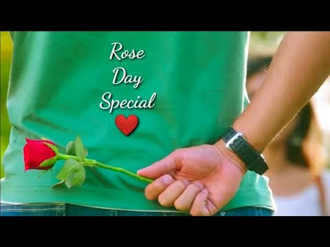 🌹7-feb-rose-day-whatsapp-status-2020-|-⚘rose-day-special-video-song-|-🌷happy-propose-day-status🌹