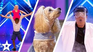America's Got Talent 2017 Week 2 Auditions | Mia the Counting Cockapoo, Aryton and Paige & More!!