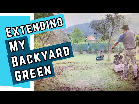 How To Build A Putting Green In Your Backyard