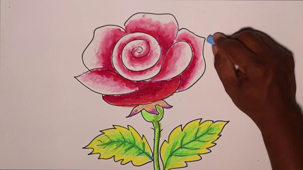 How To Draw Simple Rose Flower With Colours For Kids By Weekend Art Episode1 Youtube