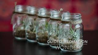 WONDER: 15 Minute Guided Meditation | A.G.A.P.E. Wellness