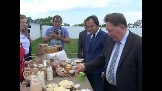 видео Фермы  по производству молока и говядины