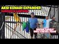 Kenari Expander Milik Bapak Sadali Garuda Army Sf Feat Ajib Sultan Akbar  Mp3 - Mp4 Download