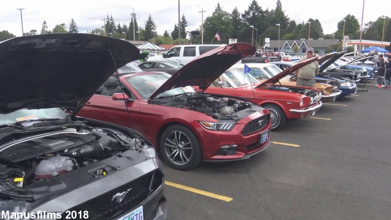 9th annual all ford car show at skyline ford