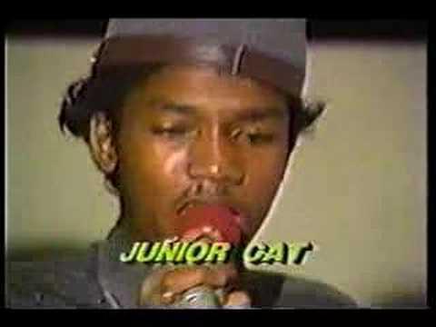 "Jr Cat  * NewYorker, NewYorker"" '85 -Jaro"
