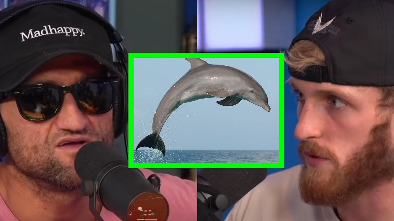 CASEY NEISTAT IS VERY AFRAID OF DOLPHINS