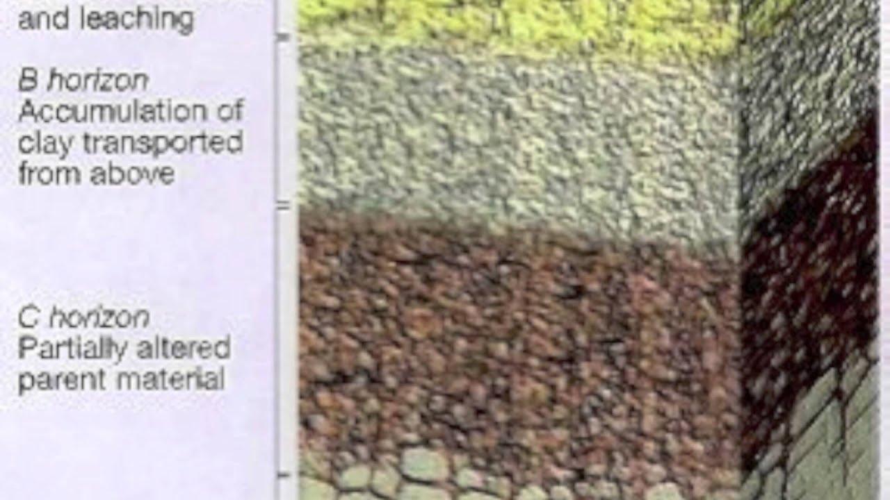 soil profile diagram of michigan evinrude 70 hp wiring youtube