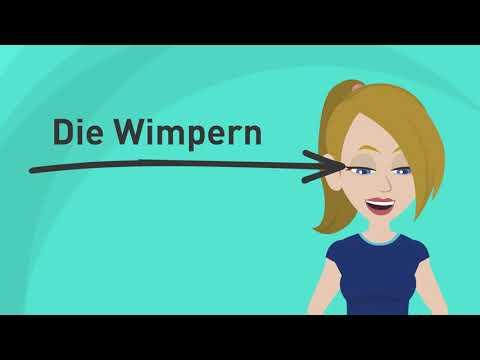 Deutsch lernen | die Körperteile | Wortschatz | Quiz