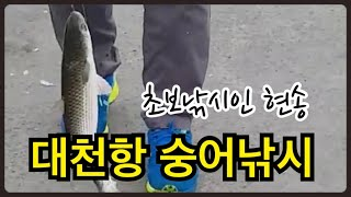 현송TV-대천항 숭어낚시 (바다낚시, 대천여행, 낚시포…