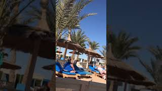 Albatros beach Hurghada Egypt Red Sea