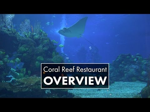 Coral Reef Restaurant | Epcot