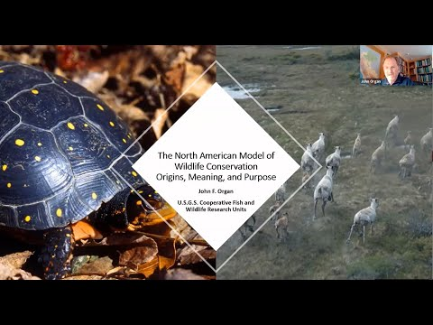 The North American Model of Wildlife Conservation: Origins, Meaning, and Purpose