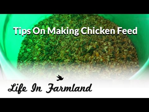 Making Chicken Feed   Pros and Cons with Price Break Down