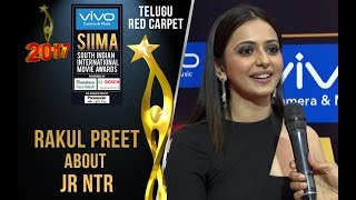 Rakul Preet About Jr NTR at SIIMA 2017 - Telugu Red Carpet
