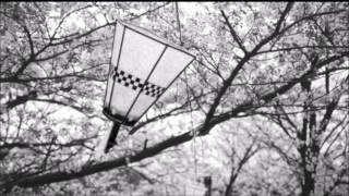 Download Bee (Cradle with Aloe Blacc) - Anymore MP3 song and Music Video
