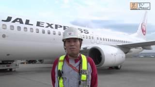 日本航空が、鶴っと!丸っと!わかる。 JAL特集」を、 JAL スカイ...