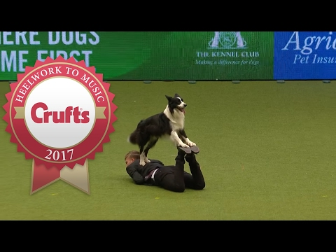 Heelwork To Music - International Freestyle Competition Part 2/3 | Crufts 2017