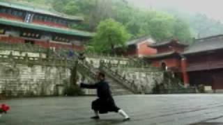 武當太極拳36式 / Wudang Taichi Quan 36 Forms