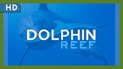 Dolphin Reef (2019) Trailer