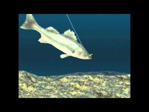 Reel Fishing II Soundtrack Sea Bass Fishing