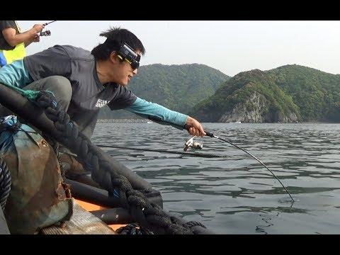 fishing-outside-of-amberjack-farm.-fishing-in-japan