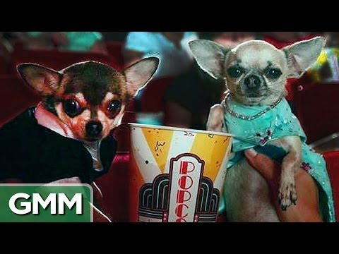 Should You Sneak Food Into The Movies? from YouTube · Duration:  11 minutes 49 seconds