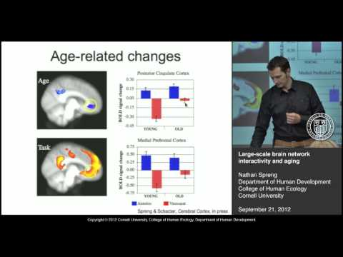 Large-scale Brain Network Interactivity and Aging