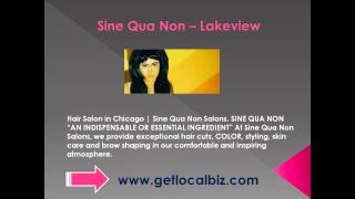 Hair Salon in Chicago - Sine Qua Non Salons - Get Local Biz Thumbnail