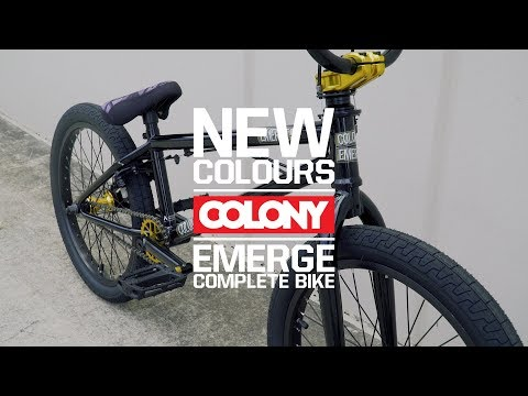 Gloss Black and Gold is a classic combination that never seems to get old. New Colony Emerge is looking tight, available now. More info here: ...