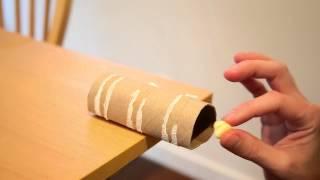 Een No Kill Mouse Trap met een Wc-Papier Rollen