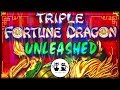 High Voltage Blackout ⚡️Triple Fortune Dragon Unleashed 🐲 The Slot Cats 🎰😺😸⚡️