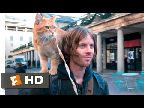 A Street Cat Named Bob (2016) - Bob's First Day Scene (5/10) | Movieclips