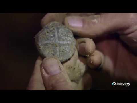 Старинная пломба   В поисках сокровищ: змеиный остров   Discovery Channel